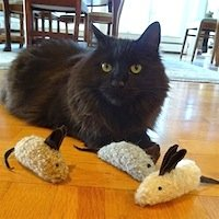 Alpaca Cat Toy Mouse