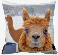 Alpaca pillow stuffed cushion Island Alpaca