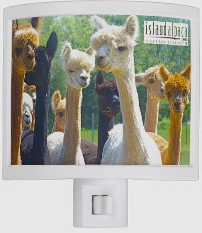 Alpaca Night Light sale safe