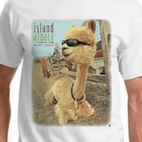 This comfortable, white, cotton tee, offers style and comfort, with a fun photo of our favorite sylin' alpaca, Island Alpaca Roberto! Our Island Alpaca Logo appears on the front, the back is blank.  Composition: 100% Pre-Shrunk Cotton
