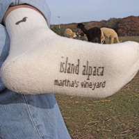 Alpaca sock warm soft island alpaca farm martha's vineyard show clothing alpaca